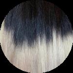 1/Grey Ombre